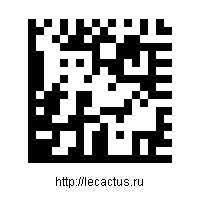 lecactussemacode.jpg