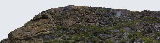 Каменный ящер